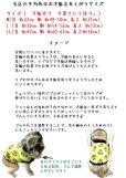 画像5: 【受注製作】起毛レオパード(緑・リブカーキ) (5)